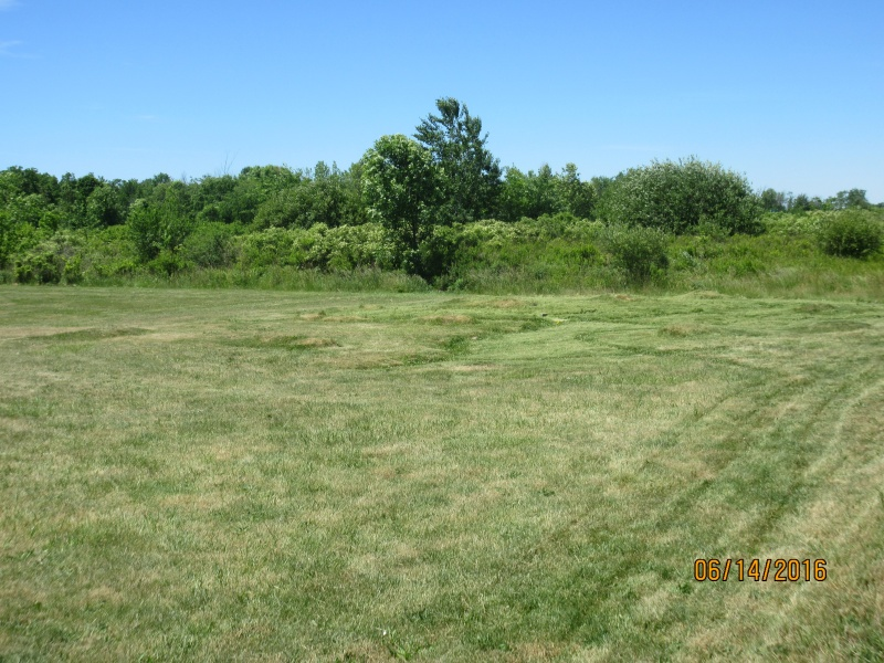 Field Maintainance Img_0211