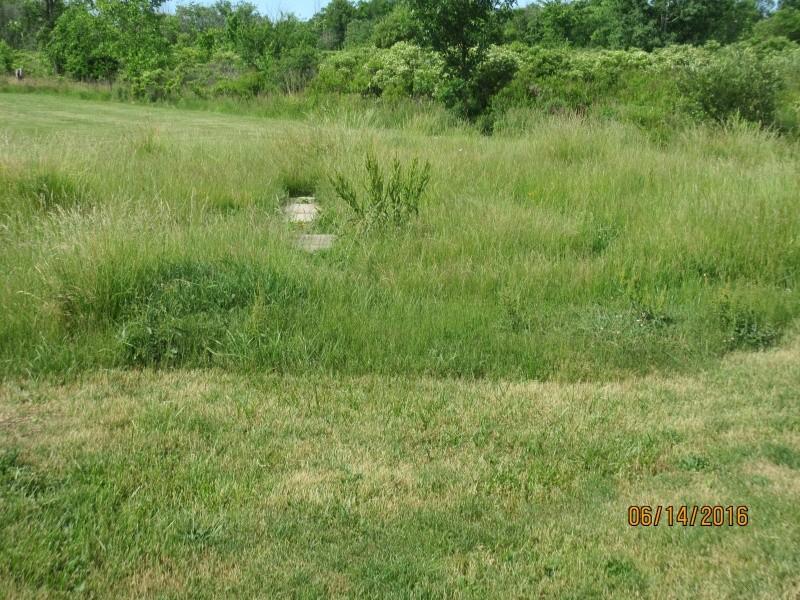Field Maintainance Img_0215