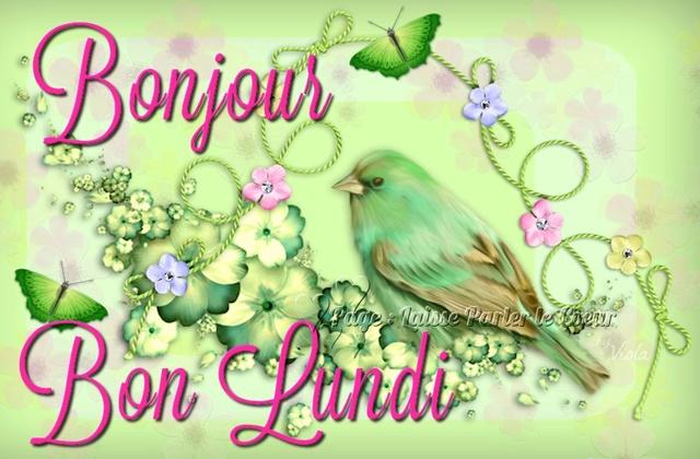 Bonjour-Bonsoir du mois d' Aout Lundi_11