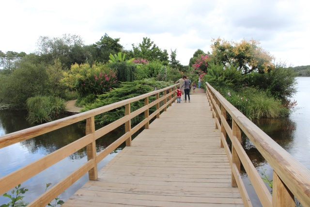 (40) Promenade fleurie du Lac de Mimizan-Aureilhan Entrae10