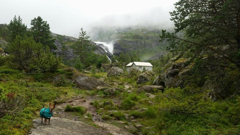 Nos 10 jours de vacances en Norvège 13895111