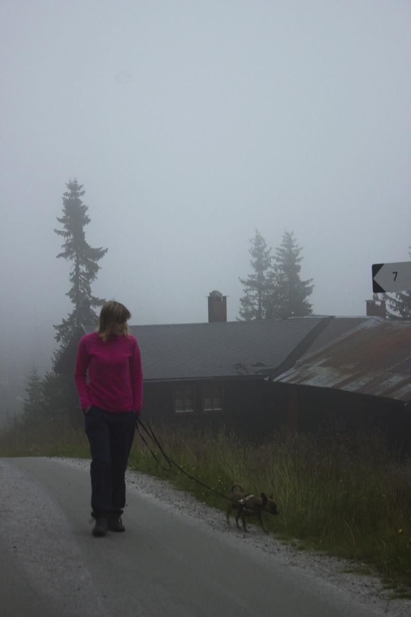 Nos 10 jours de vacances en Norvège Img_2913
