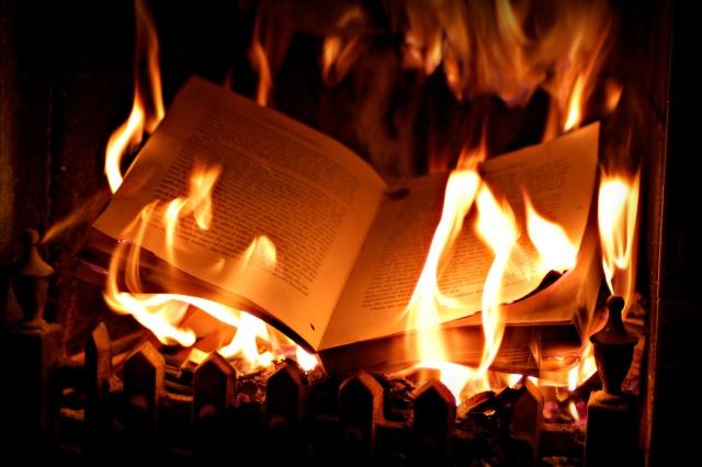 Vous cherchez un livre - Page 2 Burnin10