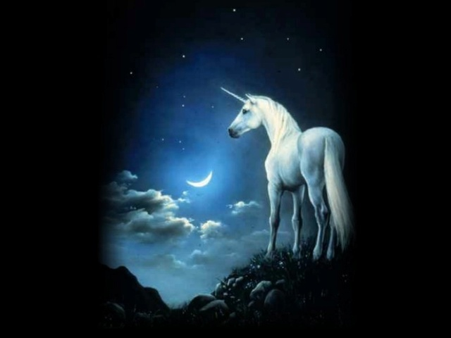 Licornes, centaures et chevaux ailés Licorn10