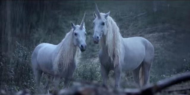 Licornes, centaures et chevaux ailés Licorn11