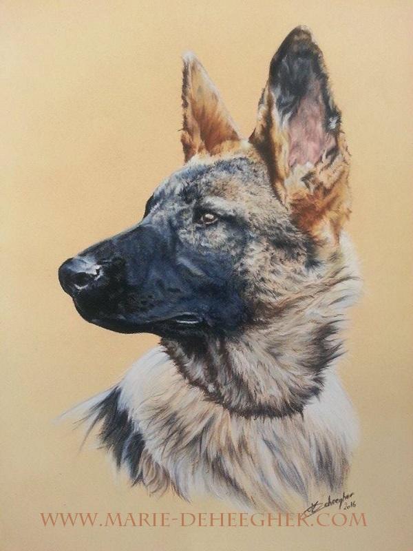 Marie Deheegher - Artiste Animalier - Page 2 13650410