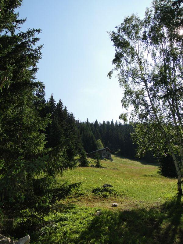 La Rosière / Le lac du Retour par le Vaz Dsc02214
