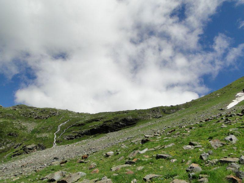 Sainte-Foy - Col du Mont - Col de Montséti Dsc02470