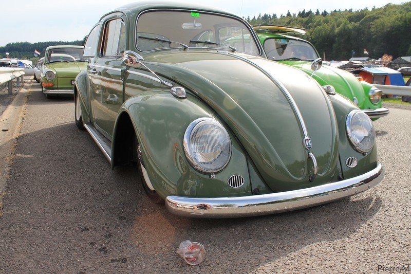 bug show 2013 Img_1911