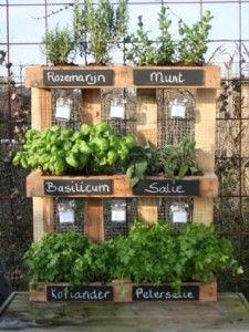 Pour du jardinage ENFIN écologique à Bruxelles Jardin10