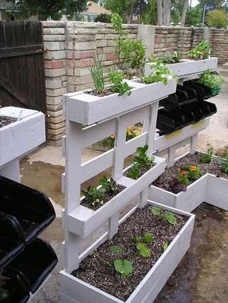 Pour du jardinage ENFIN écologique à Bruxelles Potage10