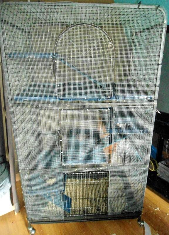 A VENDRE : Cage perfect (furets et chinchillas) regrillagée Dsc06511