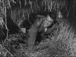 Allez coucher ailleurs ! (I Was a male war bride) de Howard Hawks 1949 Couche27