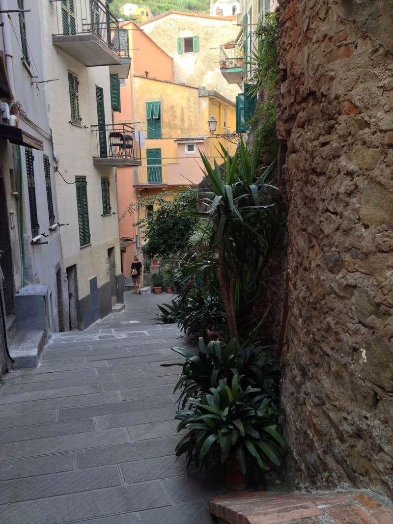 Italie  -  Ligurie, les Cinque Terre - Page 4 Image14