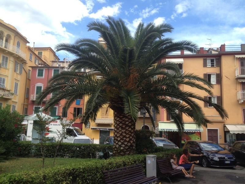 Italie  -  Ligurie, les Cinque Terre - Page 4 Image23