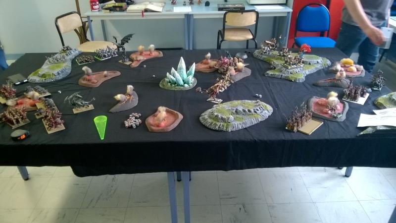 Le tournoi de la Plaine Sanglante Wp_20126