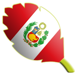 Fecha 6 Peru10
