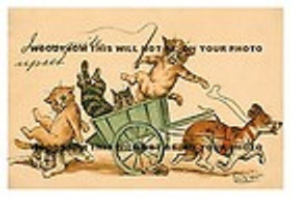 Louis Wain...et ses célèbres chats ! 14012