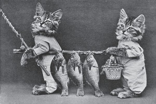 Louis Wain...et ses célèbres chats ! Cat4-210