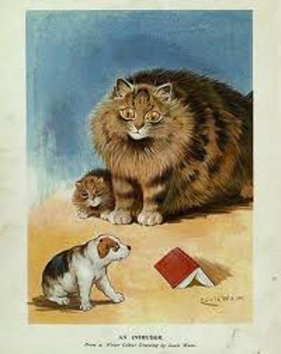 Louis Wain...et ses célèbres chats ! Images20