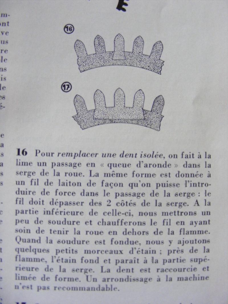 Oignon à coq Dscf8310