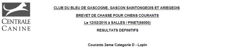 Les bbg en brevets saison 2015/2016 Lapin510