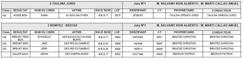 Les bbg en brevets saison 2015/2016 Lapin610
