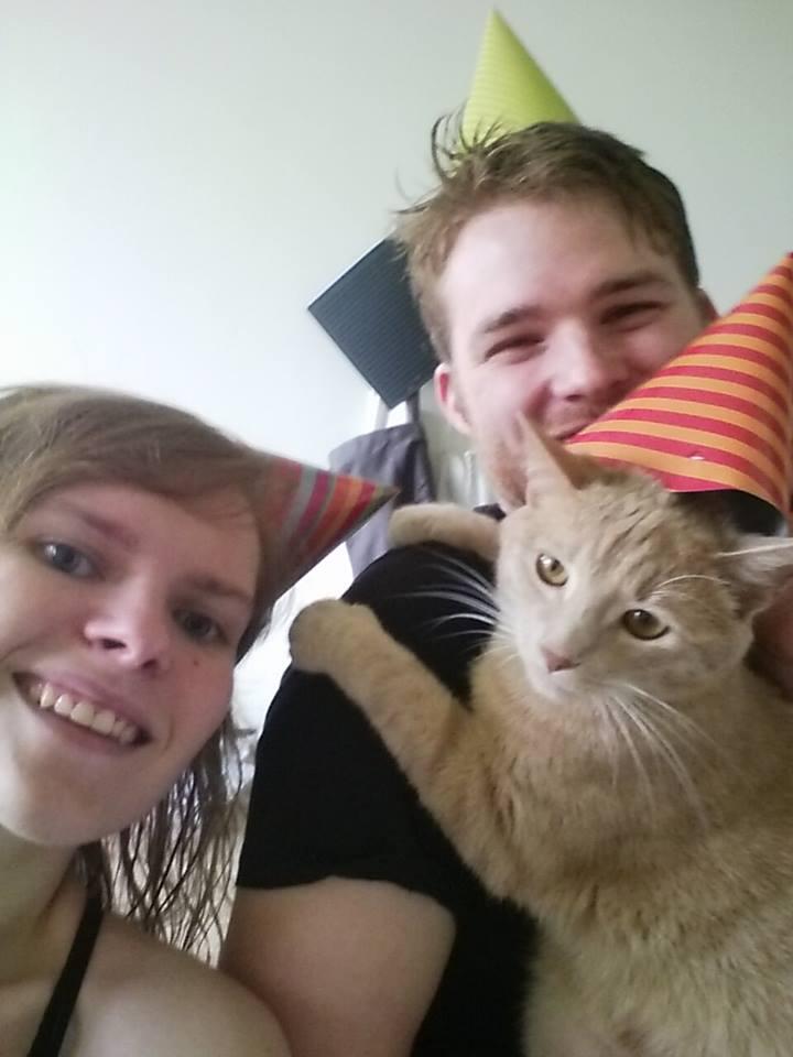 BISCUIT, adorable chaton de 3 mois à la robe roux clair Twistb10