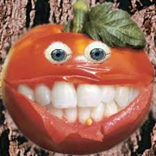 commerce ~ Tomate10