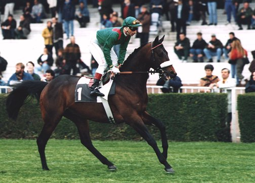 Race - Le pur sang ( Anglais )  Valano10
