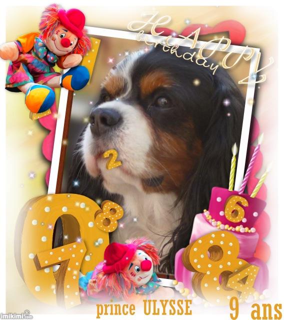 bon anniversaire mon Ulysse chéri Y3mo-112