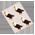 Habitat Aigle à Tête Blanche => Imprimé Aigle à Tête Blanche Baldea11