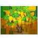 Vous cherchez un arbre ? Venez cliquer ici !!! Golden13