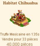 Habitat Chihuahua Sans_115