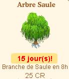 arbre* - Arbre Saule => Branche de Saule Sans_158