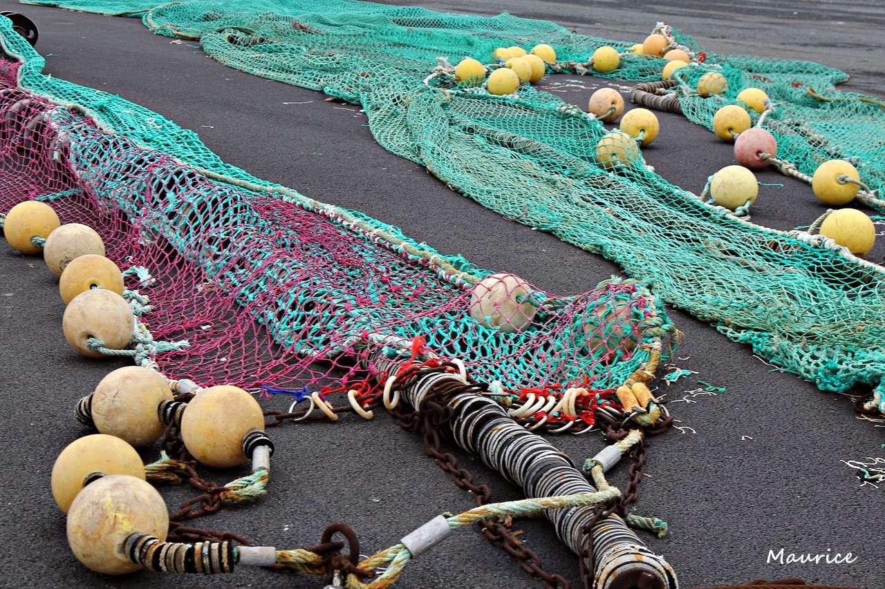 Le Guilvinec et St Guénolé ports de pêche du Pays Bigouden Img_7411