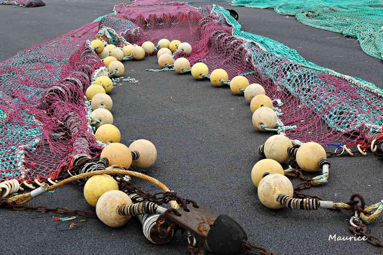 Le Guilvinec et St Guénolé ports de pêche du Pays Bigouden Img_7412