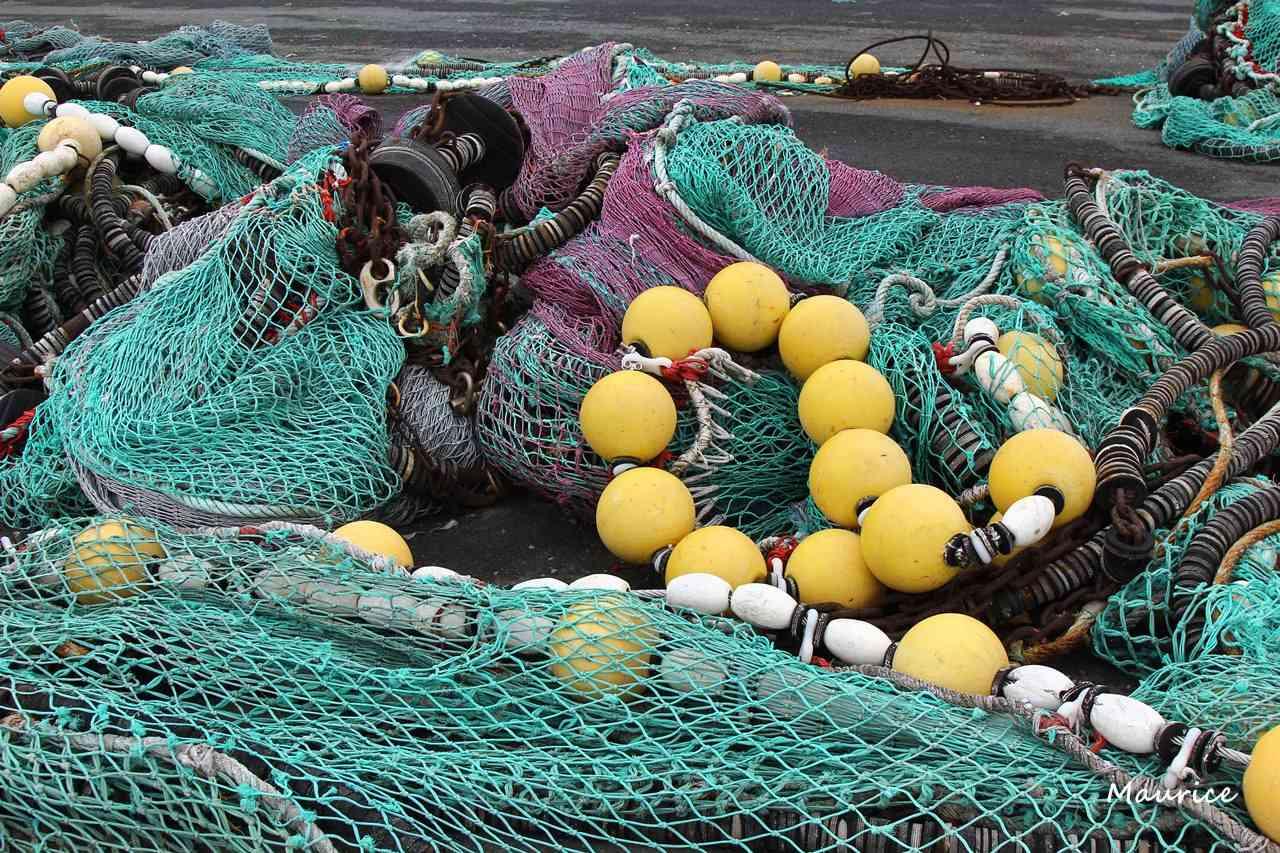 Le Guilvinec et St Guénolé ports de pêche du Pays Bigouden Img_7510