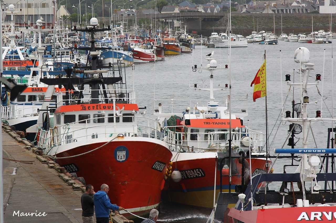 Le Guilvinec et St Guénolé ports de pêche du Pays Bigouden Img_7812