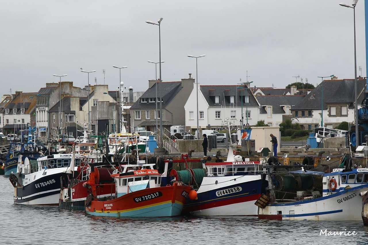 Le Guilvinec et St Guénolé ports de pêche du Pays Bigouden Img_7813