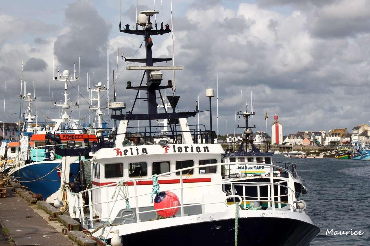 Le Guilvinec et St Guénolé ports de pêche du Pays Bigouden Img_8010