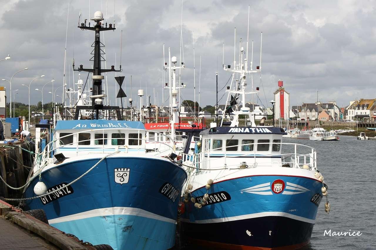 Le Guilvinec et St Guénolé ports de pêche du Pays Bigouden Img_8011