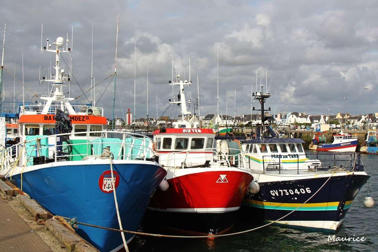 Le Guilvinec et St Guénolé ports de pêche du Pays Bigouden Img_8012