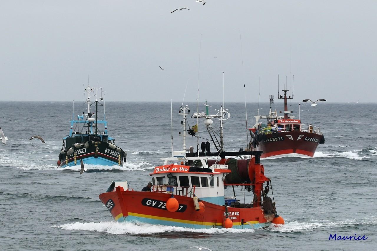 Le Guilvinec et St Guénolé ports de pêche du Pays Bigouden Img_8410