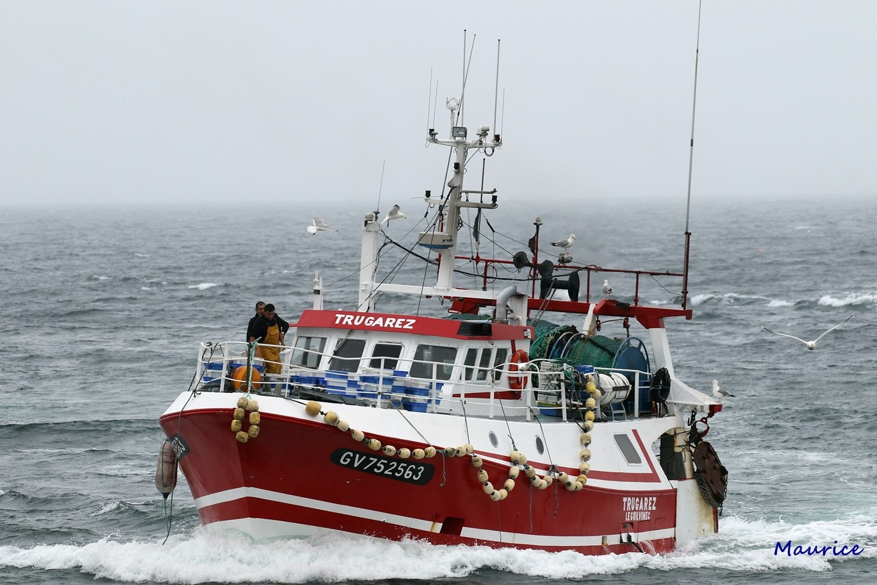 Le Guilvinec et St Guénolé ports de pêche du Pays Bigouden Img_8511