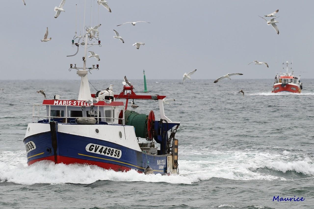 Le Guilvinec et St Guénolé ports de pêche du Pays Bigouden Img_9210