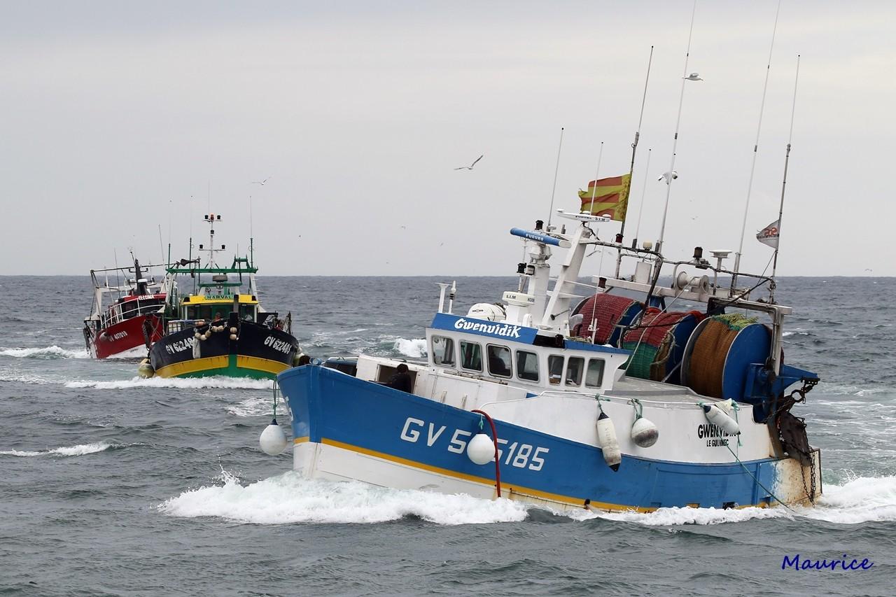 Le Guilvinec et St Guénolé ports de pêche du Pays Bigouden Img_9410