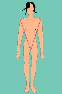 Les différents types de morphologie (femmes) Pyrami10