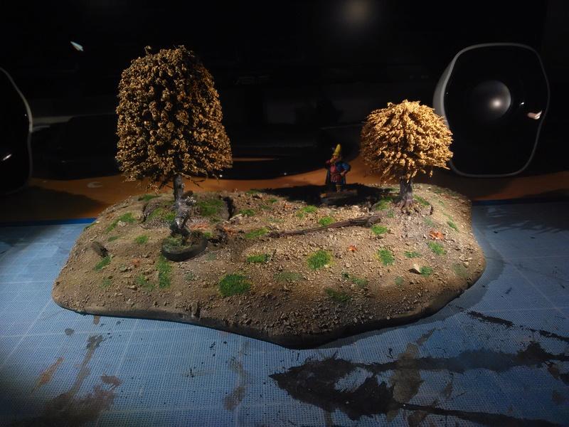 Concours de Décors/Dioramas n°1 : SdA/The Hobbit Img_2070