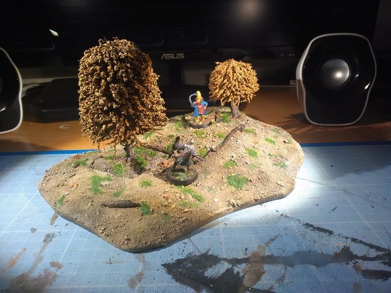 Concours de Décors/Dioramas n°1 : SdA/The Hobbit Img_2071